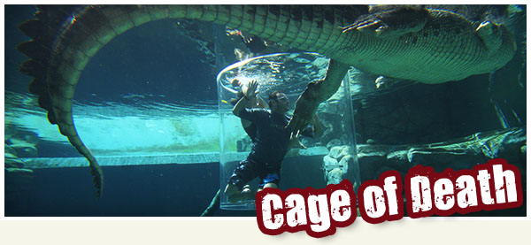 cage-of-death